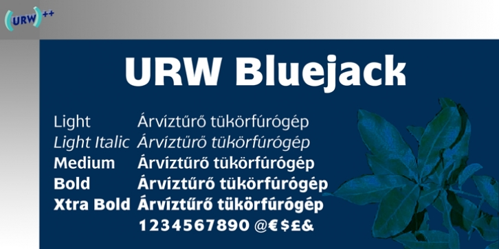 Bluejack font preview