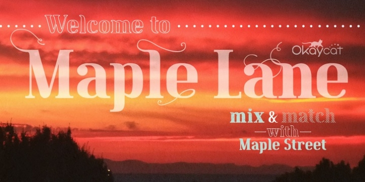 Maple Lane font preview