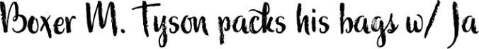 Wildly font download