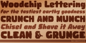Woodchip font download