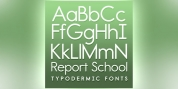Report School font download