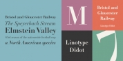 Linotype Didot font download