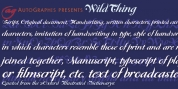WildThing font download