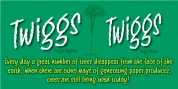 Twiggs font download