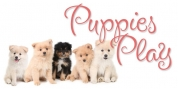 Puppies Play font download