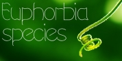 Euphorbia Species font download