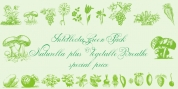 Vegetable Breath font download