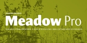 Meadow Pro font download