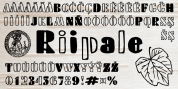 Riipale font download