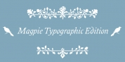 Magpie Typo font download