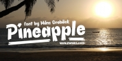 Pineapple font download