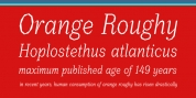Orange Roughy font download
