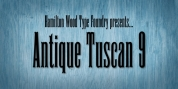 HWT Antique Tuscan 9 font download