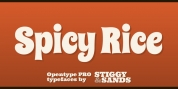 Spicy Rice Pro font download