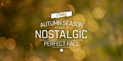 Perfect Fall font download
