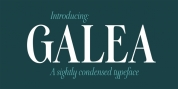 Galea Display font download
