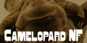 Camelopard NF font download