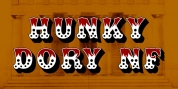 Hunky Dory NF font download