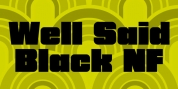 Well Said Black NF font download