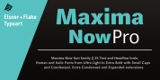 Maxima Now Pro font download