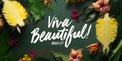 Viva Beautiful font download