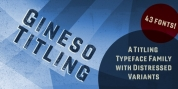 Gineso Titling font download