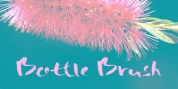 Bottle Brush font download