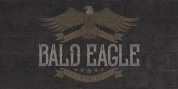 Bald Eagle font download