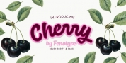 Cherry font download