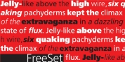 FreeSet font download