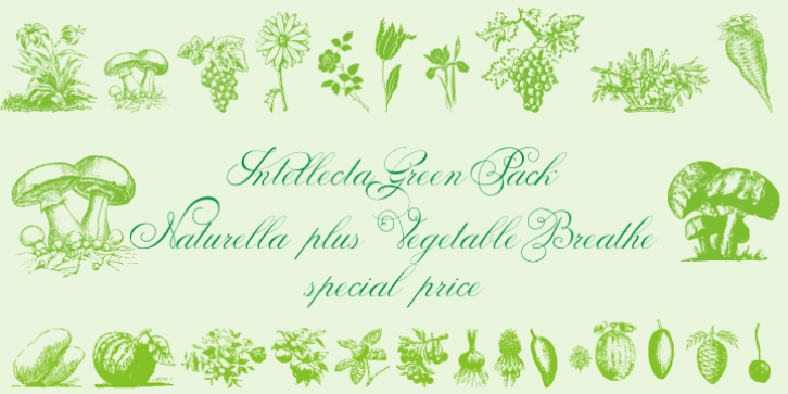 Vegetable Breath font preview